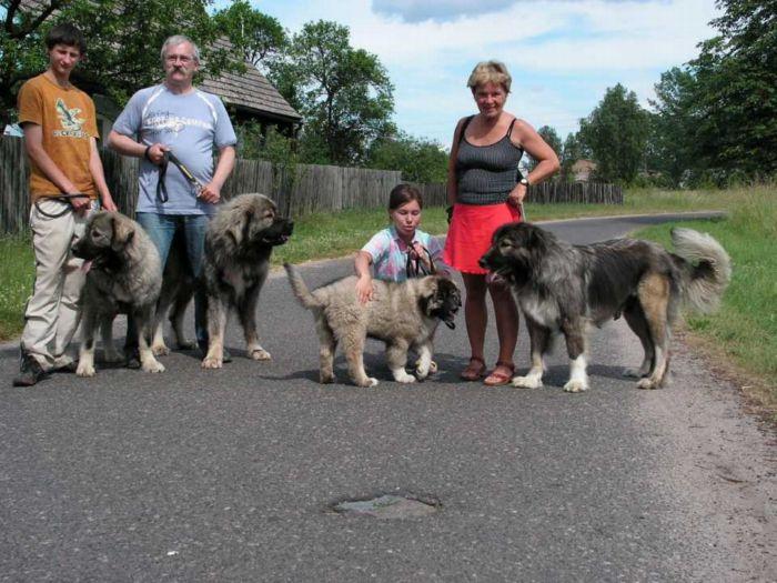 Luna a její děti - Adhara, Algol a Bonder Ksiezic Pamiru